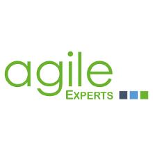 Agile Experts - Aus der Praxis für die Praxis